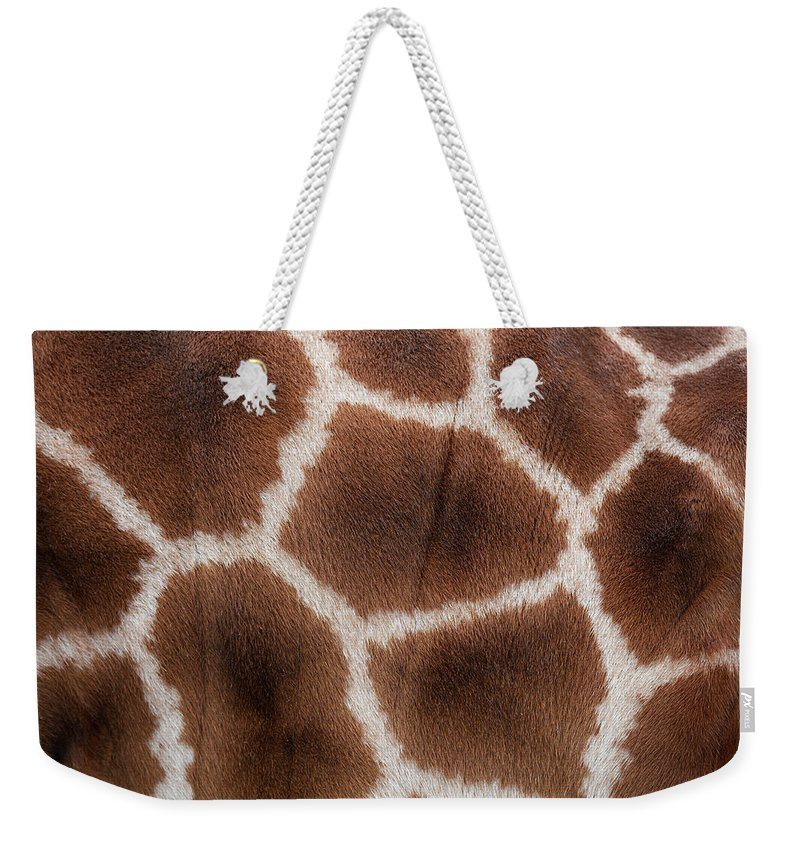 Animal Skin Weekender Tote Bag featuring the photograph Giraffes Skin Texture by Andrew Dernie