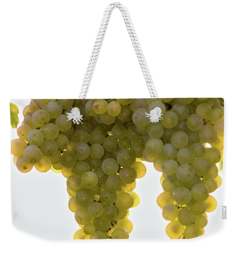 Sonoma County Weekender Tote Bag featuring the photograph Golden Wine by Farbenrausch