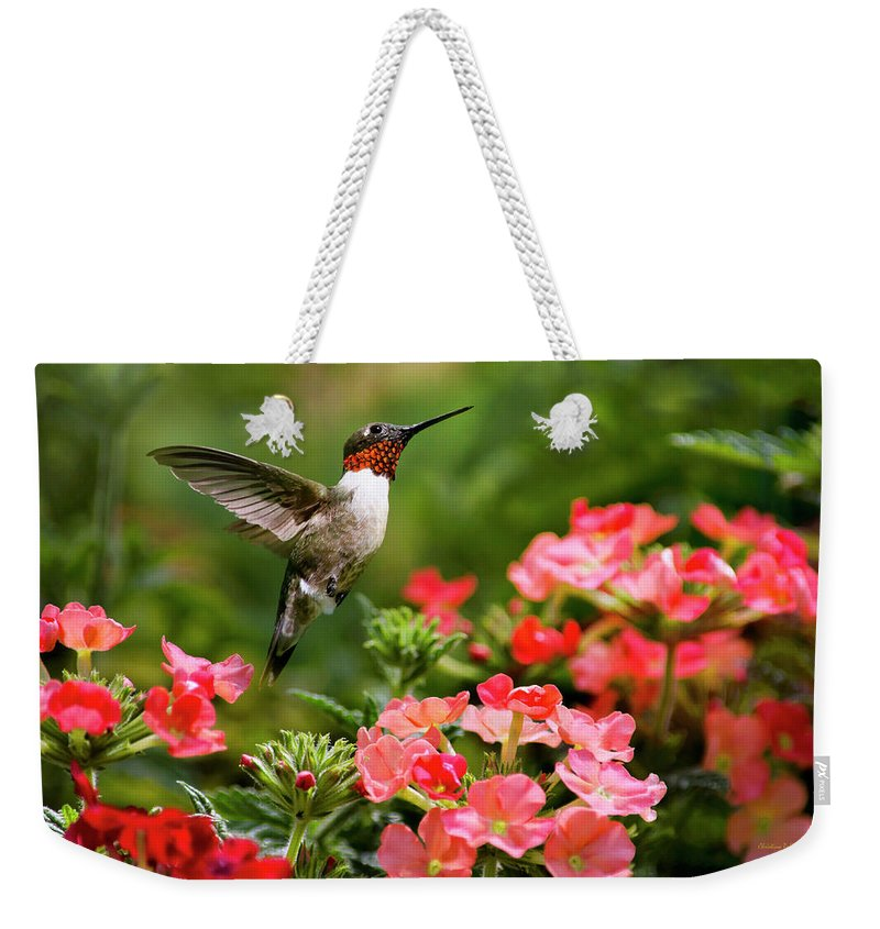 Hummingbird Weekender Tote Bag featuring the photograph Graceful Garden Jewel by Christina Rollo