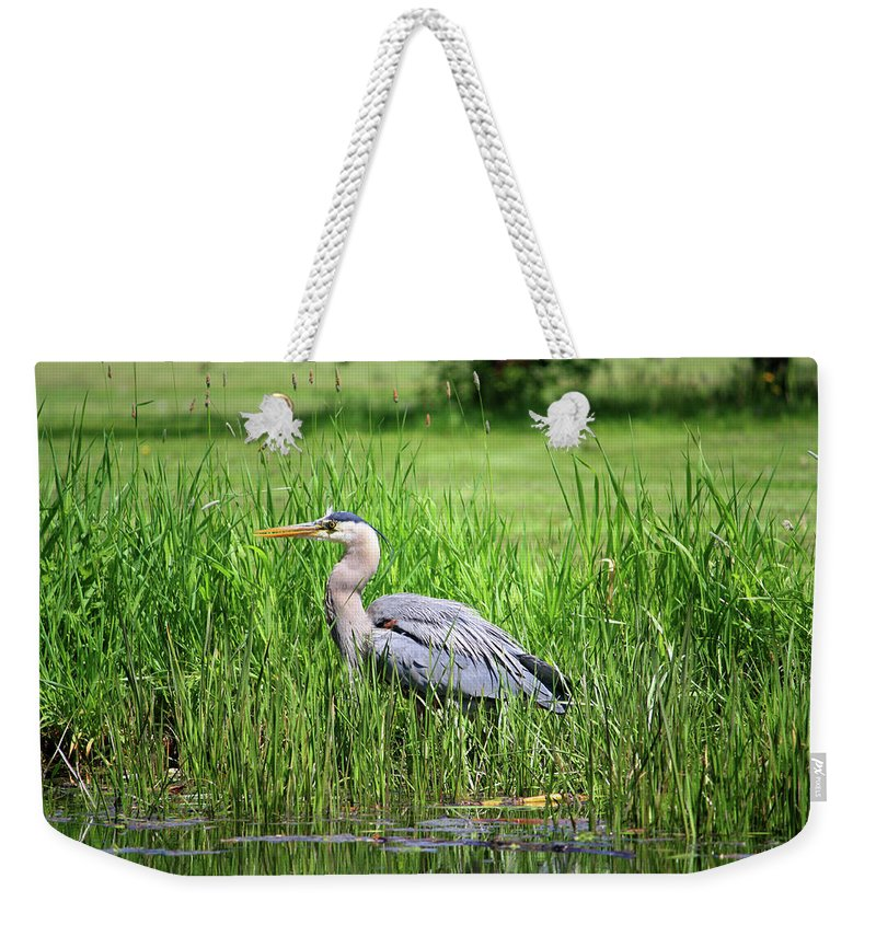 Animal Themes Weekender Tote Bag featuring the photograph Great Blue Heron by Richard A. Whittaker