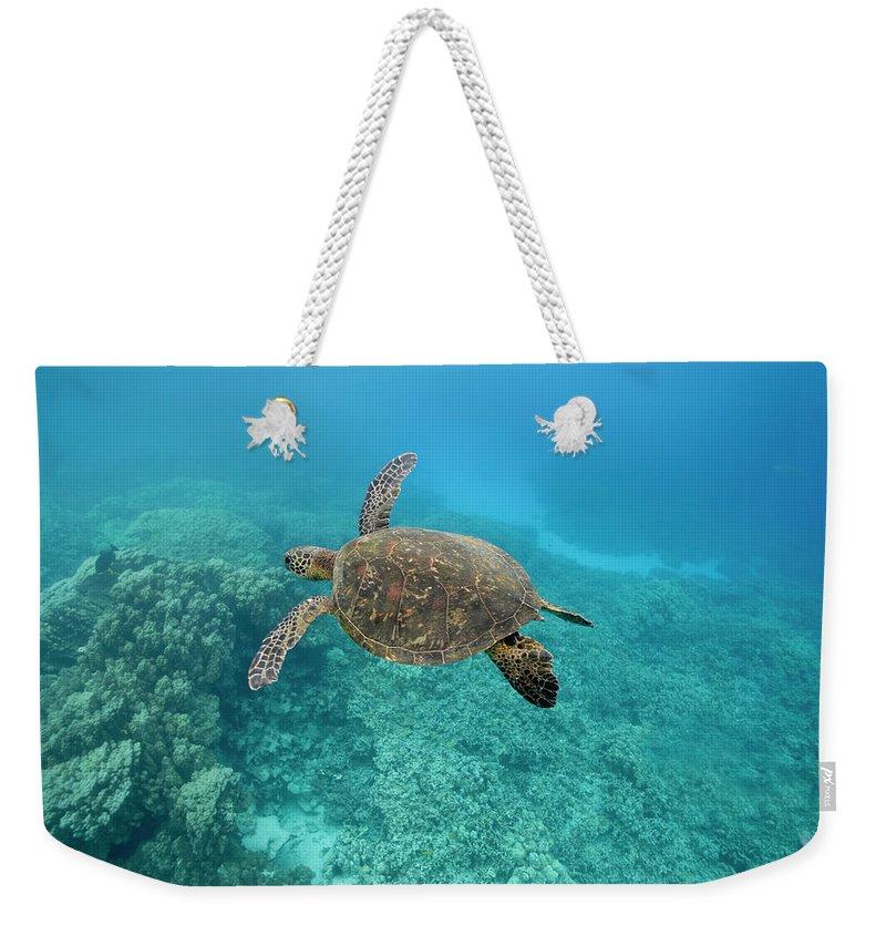 Underwater Weekender Tote Bag featuring the photograph Green Sea Turtle, Big Island, Hawaii by Paul Souders