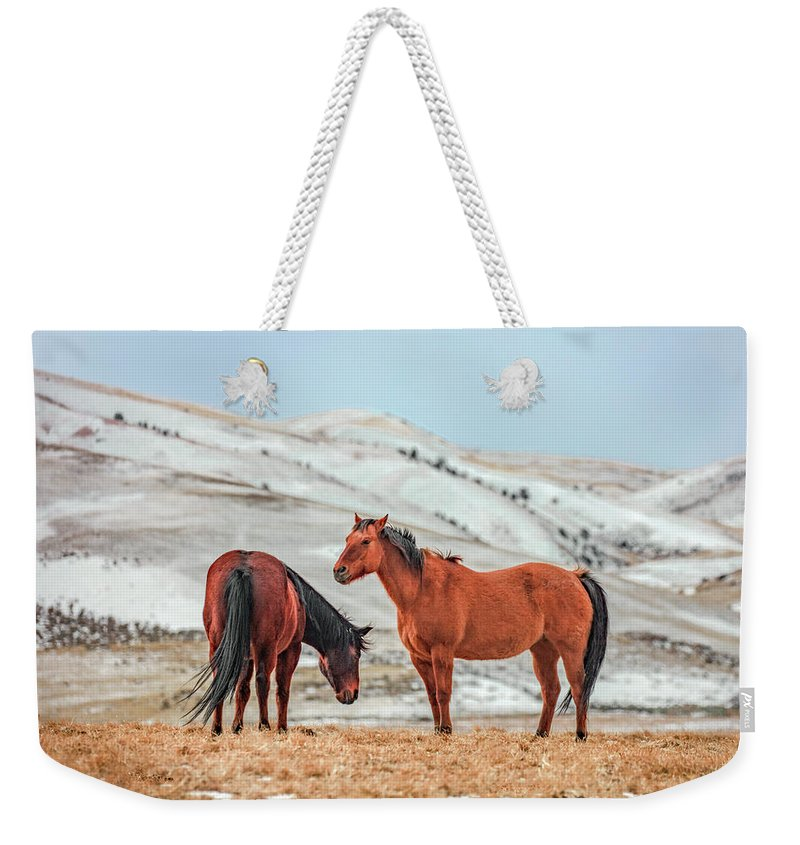 Horses Weekender Tote Bag featuring the photograph Hairy Horses by Todd Klassy