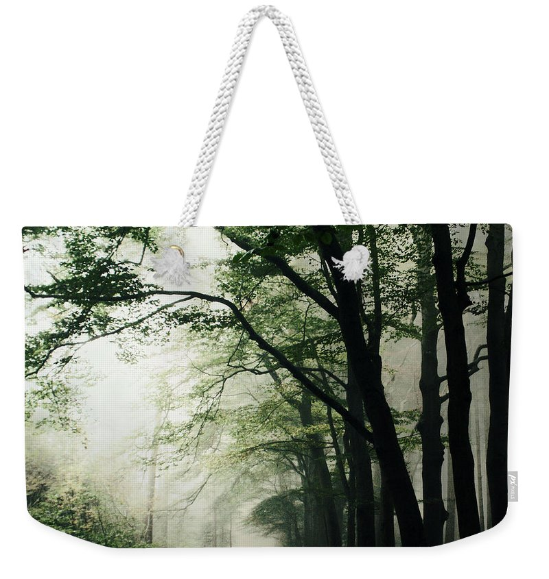 Scenics Weekender Tote Bag featuring the photograph Haunted Forest by Bob Van Den Berg Photography