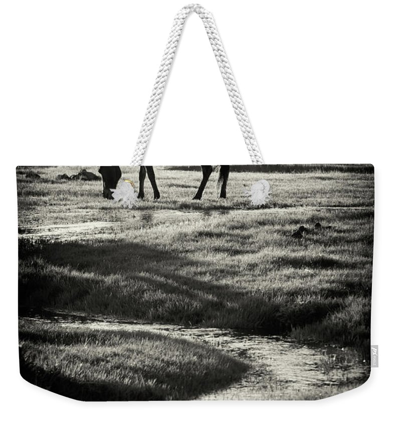Horse Weekender Tote Bag featuring the photograph Horse by Muratseyit