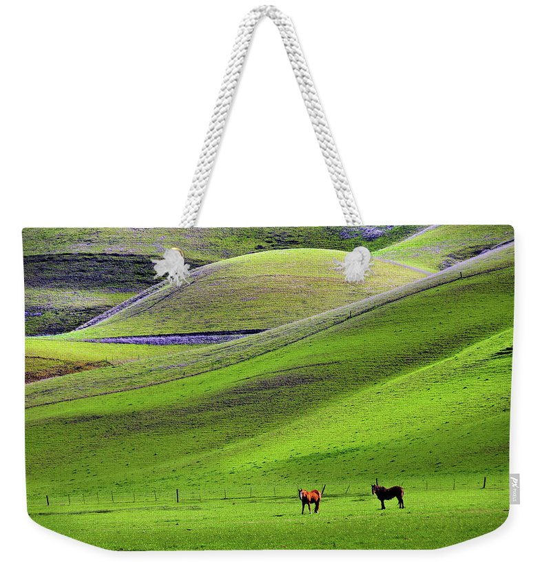 Horse Weekender Tote Bag featuring the photograph Horses In Hill Country by Mitch Diamond