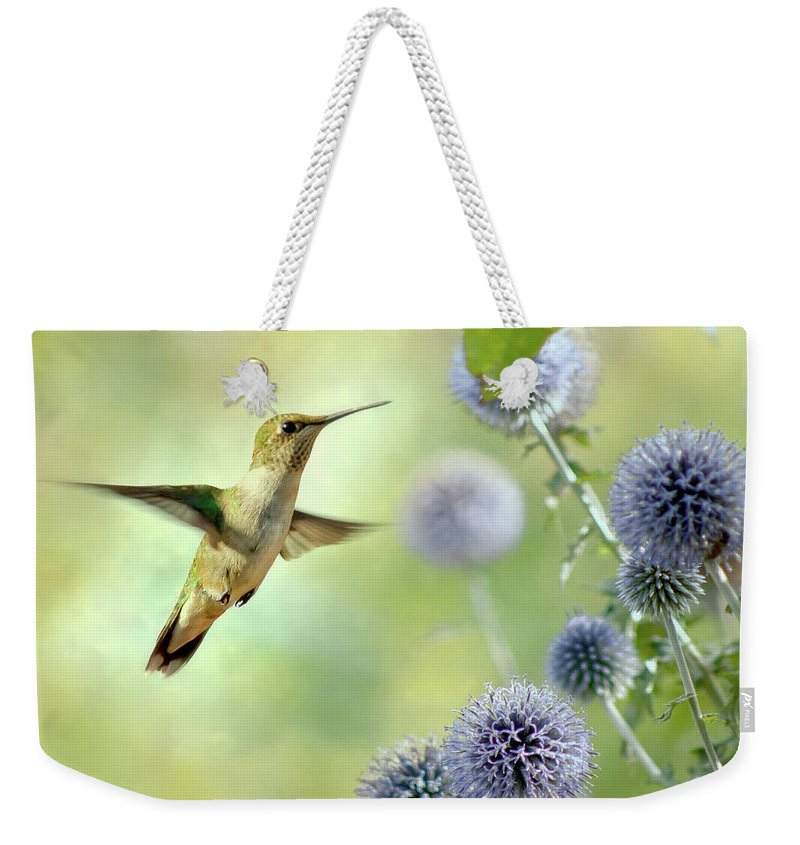 Animal Themes Weekender Tote Bag featuring the photograph Hovering Hummingbird by Nancy Rose