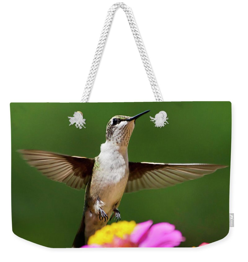 Hummingbird Weekender Tote Bag featuring the photograph Hummingbird by Christina Rollo