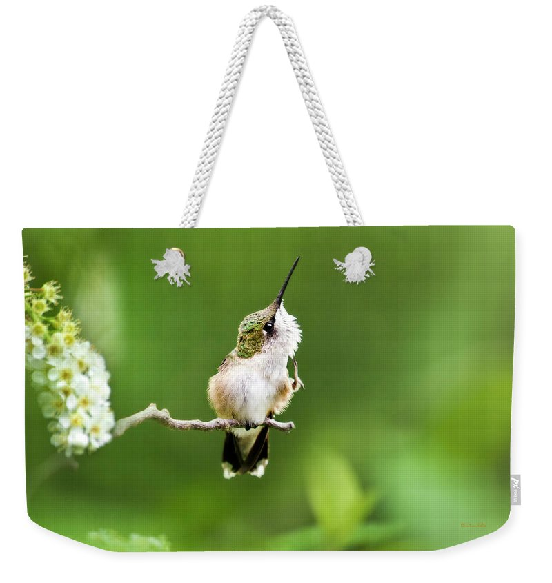Hummingbird Weekender Tote Bag featuring the photograph Hummingbird Flexibility by Christina Rollo