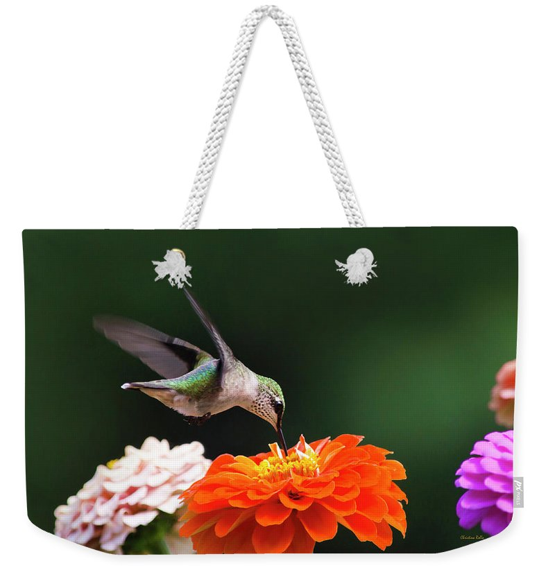 Hummingbird Weekender Tote Bag featuring the photograph Hummingbird In Flight With Orange Zinnia Flower by Christina Rollo