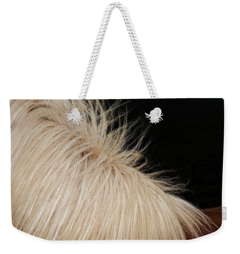 Horse Weekender Tote Bag featuring the photograph Icelandic Horse by Roine Magnusson