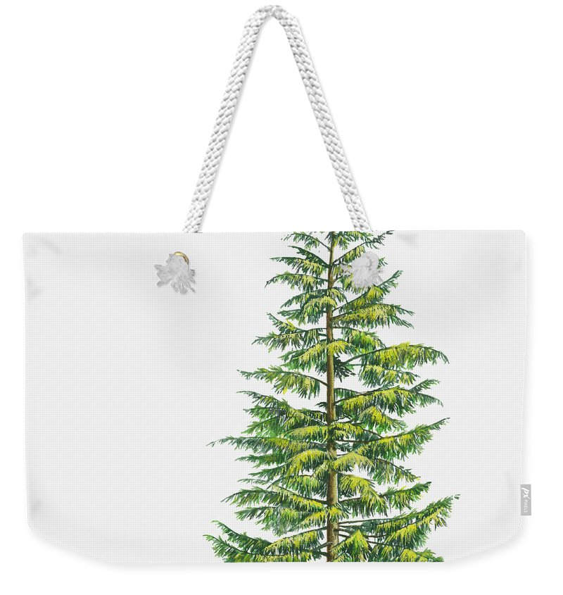 Watercolor Painting Weekender Tote Bag featuring the digital art Illustration Of Large Evergreen Tsuga by Sue Oldfield