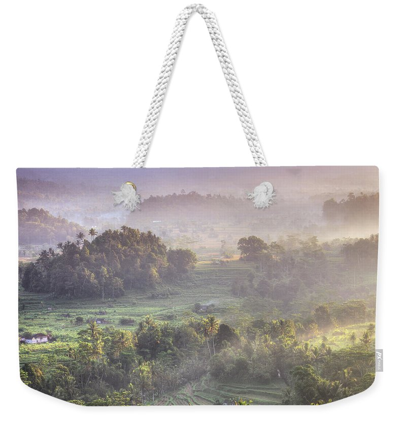 Tranquility Weekender Tote Bag featuring the photograph Indonesia, Bali, Forest Landscape by Michele Falzone