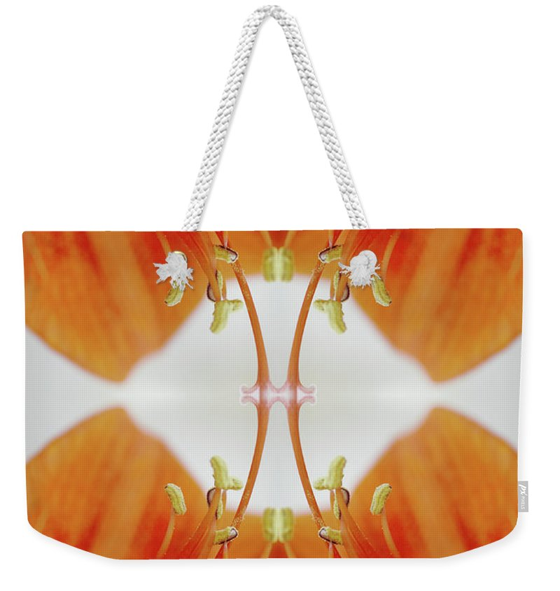 Tranquility Weekender Tote Bag featuring the photograph Inside An Amaryllis Flower by Silvia Otte