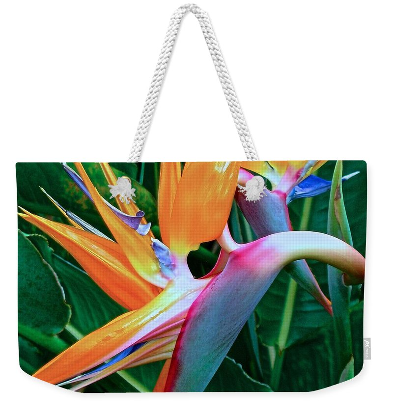 Bird Of Paradise Weekender Tote Bag featuring the photograph Intertwine by James Temple