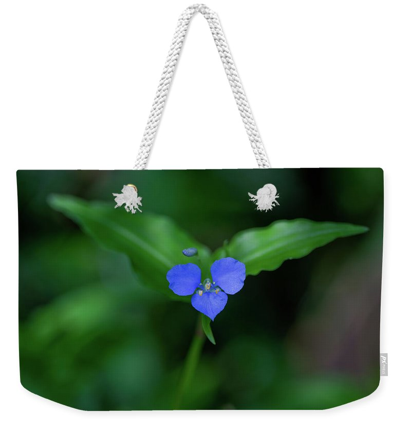 Flower Weekender Tote Bag featuring the photograph Joy To The World by Az Jackson