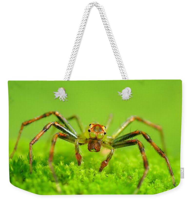Grass Weekender Tote Bag featuring the photograph Jumping Spider by Adegsm