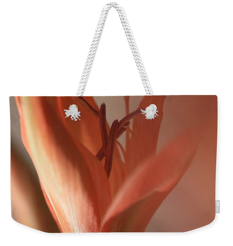 Apricots Weekender Tote Bags