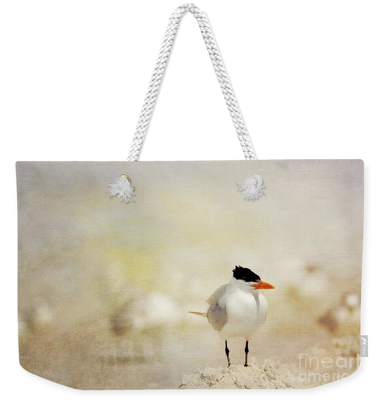 Royal Tern Weekender Tote Bag featuring the photograph King Of The Sand Pile by Beve Brown-Clark Photography