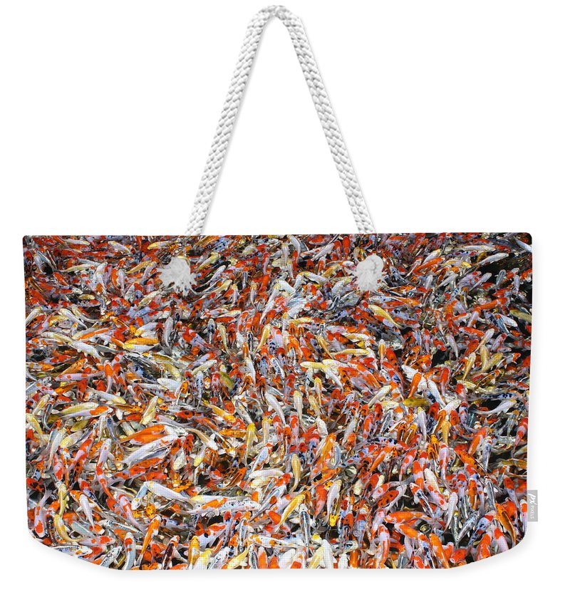 Pets Weekender Tote Bag featuring the photograph Koi Jigsaw by Chris Edwards