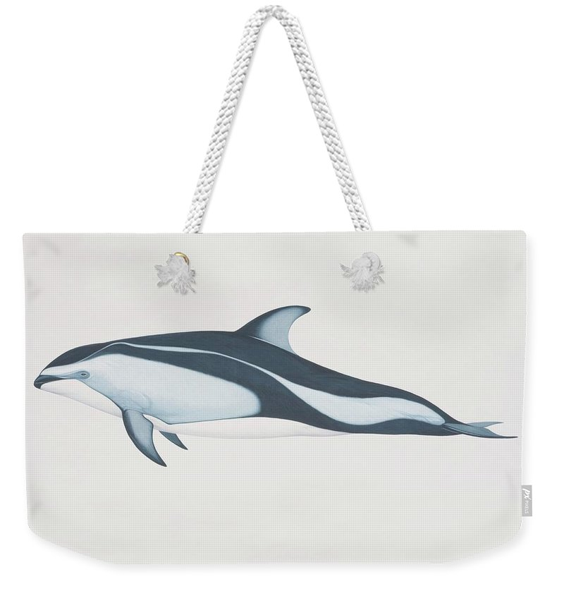 White Background Weekender Tote Bag featuring the digital art Lagenorhynchus Obliquidens, Pacific by Martin Camm