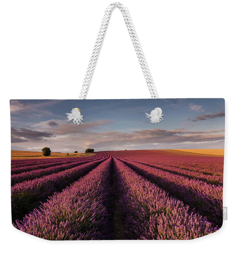 Scenics Weekender Tote Bag featuring the photograph Lavender Field by Paul Baggaley