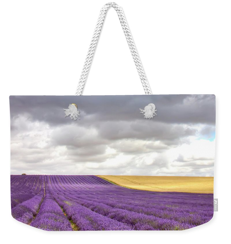 Tranquility Weekender Tote Bag featuring the photograph Lavender Field by Photo By Roger Cave