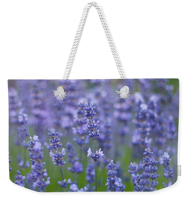 Otago Region Weekender Tote Bag featuring the photograph Lavender Flowers by Jill Ferry