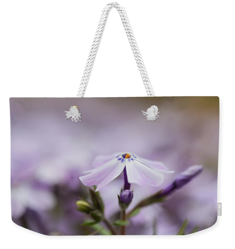 Lilac Weekender Tote Bag featuring the photograph Lavender Reverie by Emily Johnson