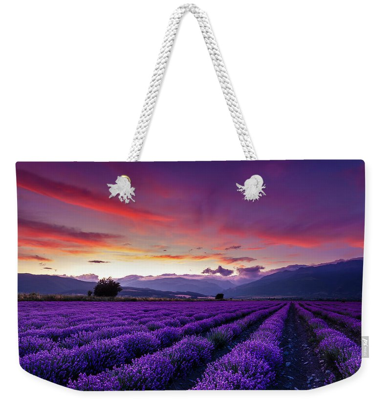 Dusk Weekender Tote Bag featuring the photograph Lavender Season by Evgeni Dinev