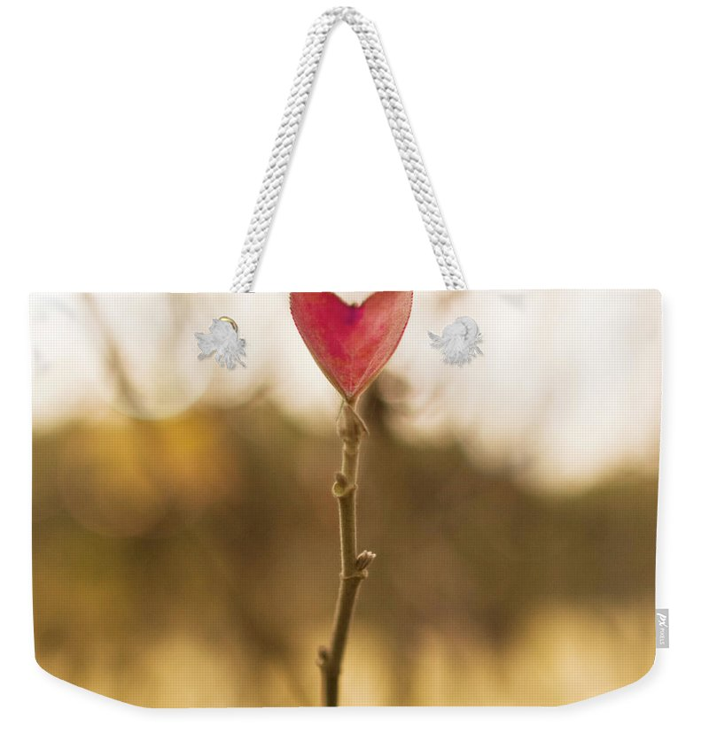 Outdoors Weekender Tote Bag featuring the photograph Leaf In Heart Shape by Twomeows
