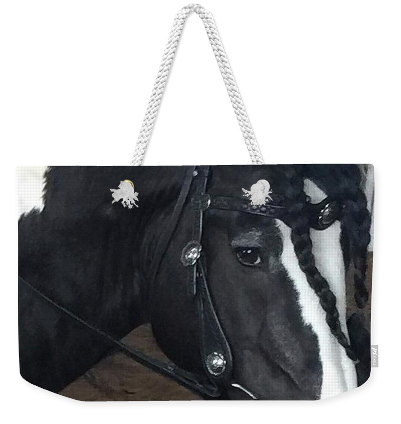 Leo Son Of Lion King Cr Weekender Tote Bag featuring the photograph Leo In Braids by Marsha Gulick