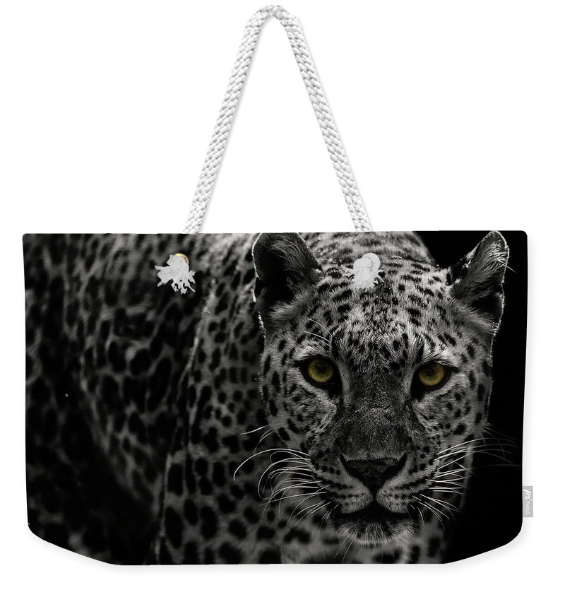 Big Cat Weekender Tote Bag featuring the photograph Leopard by Somak Pal