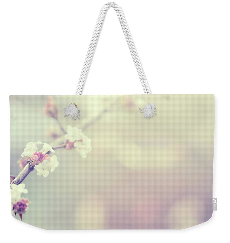 Silence Weekender Tote Bag featuring the photograph Little Flowers In Winter by Rike