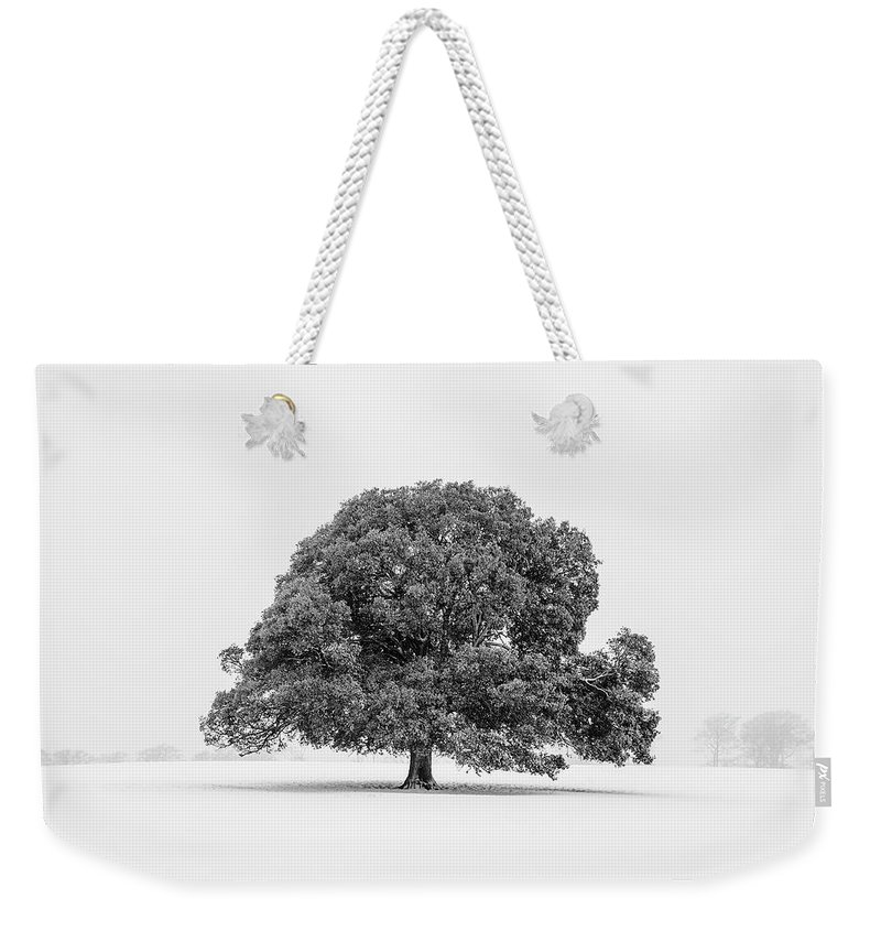 Scenics Weekender Tote Bag featuring the photograph Lone Holm Oak Tree In Snow, Somerset, Uk by Nick Cable