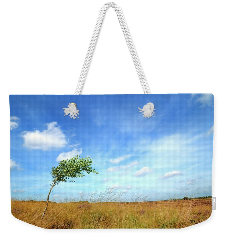 Scenics Weekender Tote Bag featuring the photograph Lonesome Tree Swept By The Wind by Nikitje