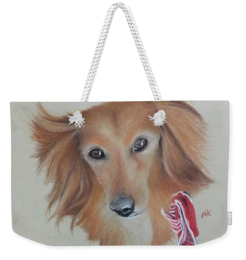 Long Haired Miniature Dachshund Weekender Tote Bag featuring the pastel Long Haired, Miniature Dachshund by Catt Kyriacou