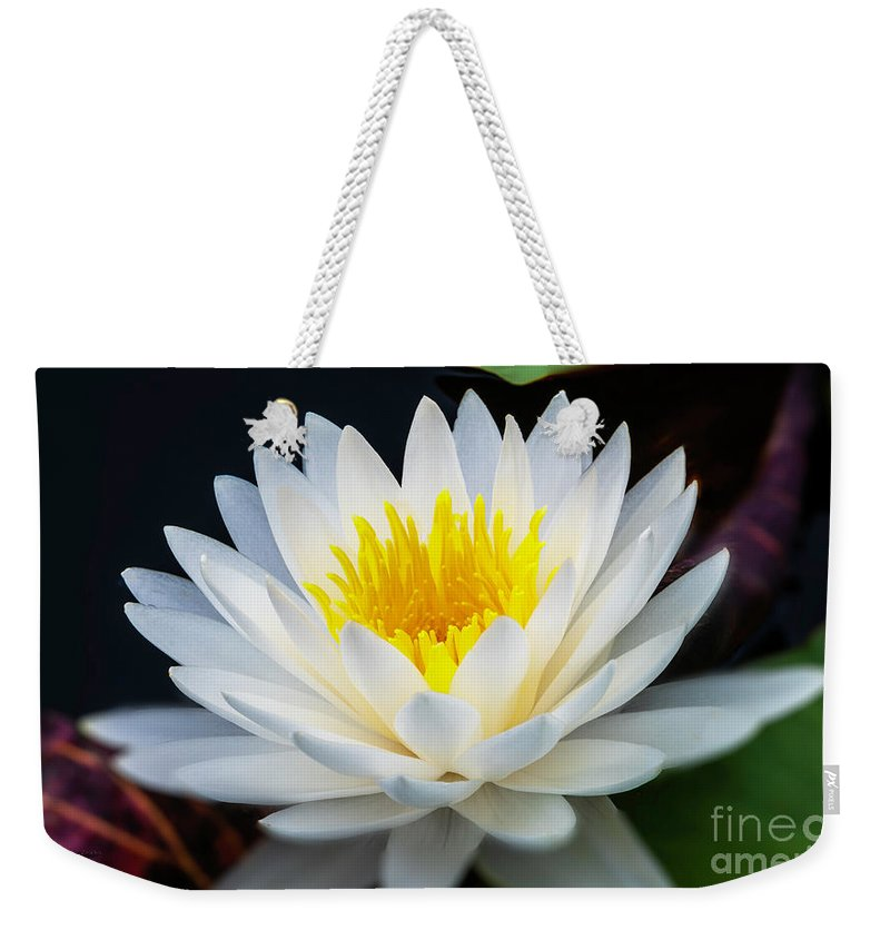 Flower Weekender Tote Bag featuring the photograph Lotus Gold by Marvin Spates