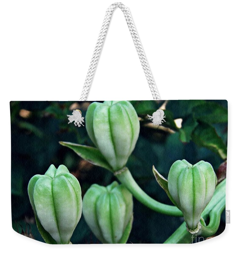 Lily Weekender Tote Bag featuring the photograph Madonna Lilies by Sarah Loft