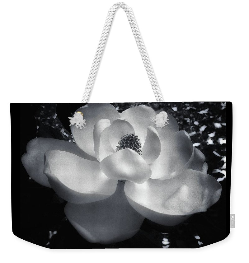 Magnolia Weekender Tote Bag featuring the photograph Magnolia 4 by Carey Smith