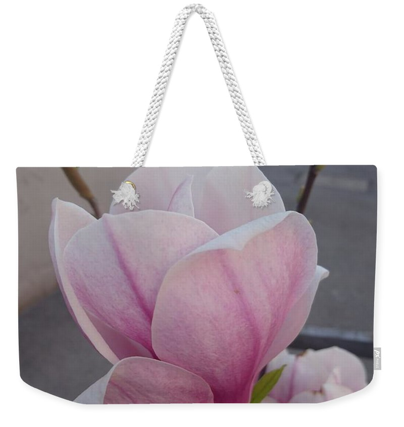 Weekender Tote Bag featuring the photograph Magnolia by Anzhelina Georgieva