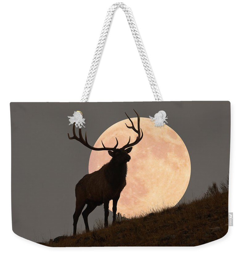Horned Weekender Tote Bag featuring the photograph Majestic Bull Elk And Full Moon Rise by Mark Miller Photos