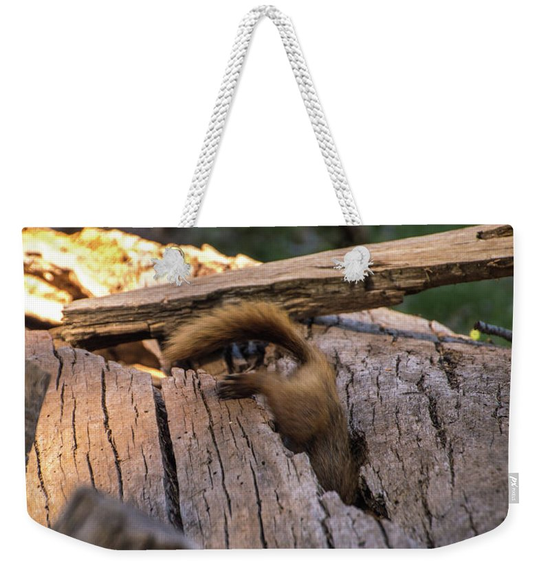 Marmot Weekender Tote Bag featuring the photograph Marmot Escape by Carly Creley