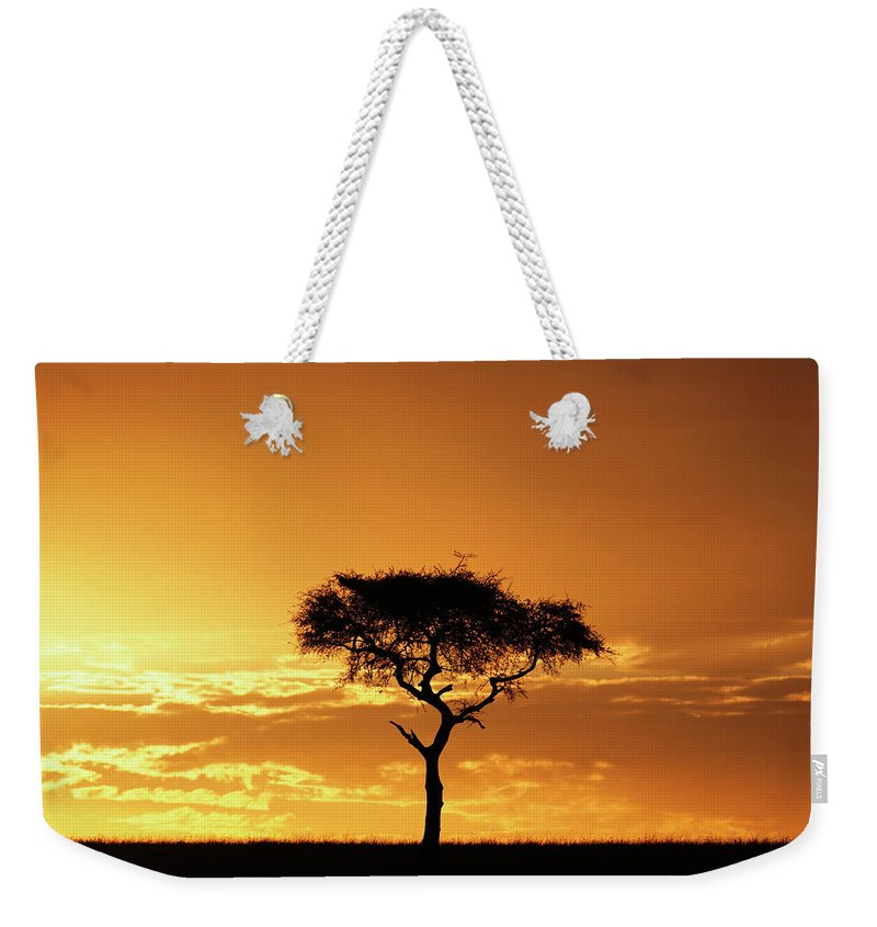 Tranquility Weekender Tote Bag featuring the photograph Masai Mara National Game Reserve, Kenya by William Manning
