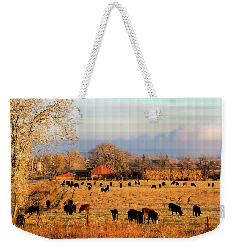 Scenics Weekender Tote Bag featuring the photograph Morning Farm Scene by Beklaus