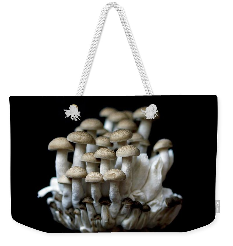 Edible Mushroom Weekender Tote Bag featuring the photograph Mushoom Against Black Background by Zachary Rathore