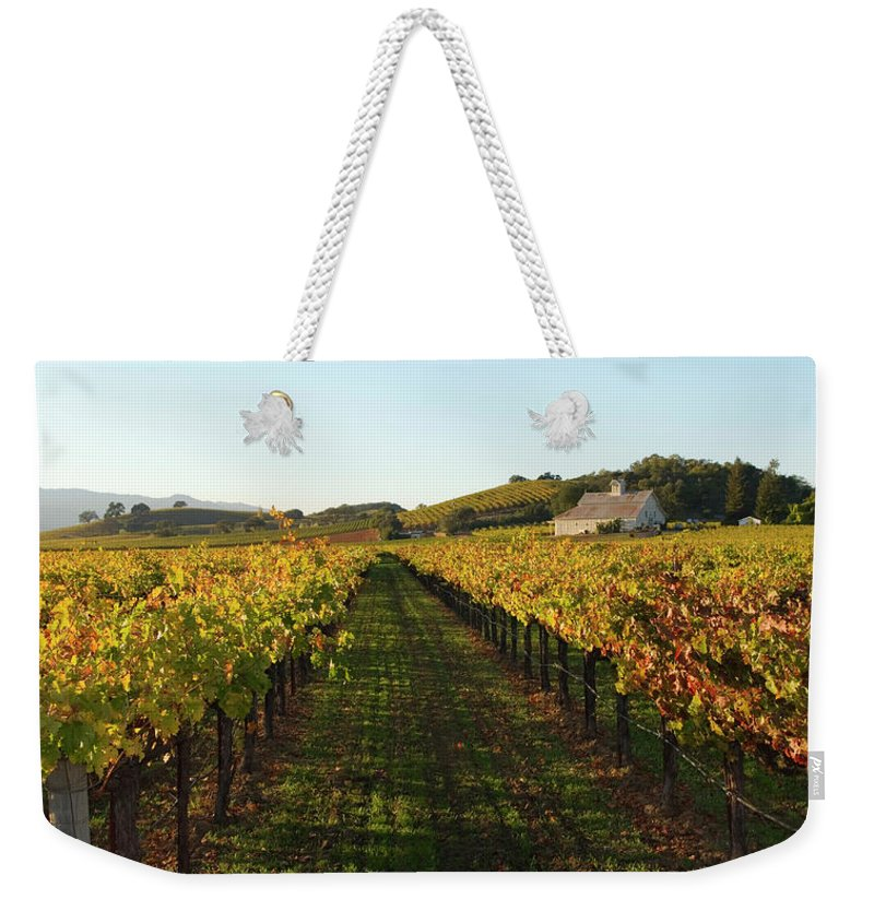 Scenics Weekender Tote Bag featuring the photograph Napa Valley Vineyard In Autumn by Leezsnow