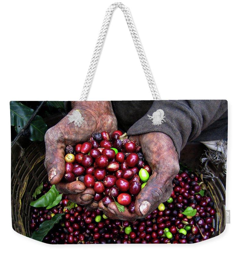 Working Weekender Tote Bag featuring the photograph Nicaraguan Coffee Picker by Digi guru
