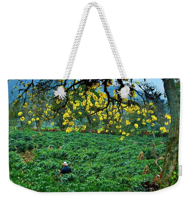 Expertise Weekender Tote Bag featuring the photograph Orosi Valley by John Coletti