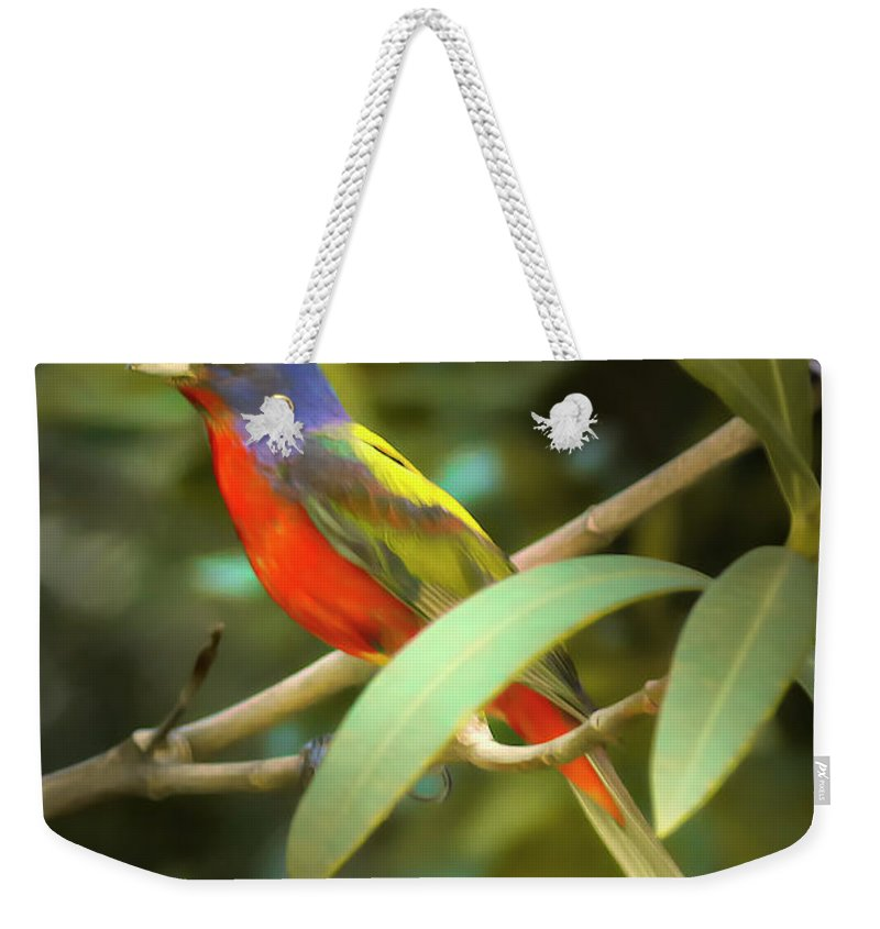 Beaufort County Weekender Tote Bag featuring the photograph Painted Bunting Male by Phill Doherty