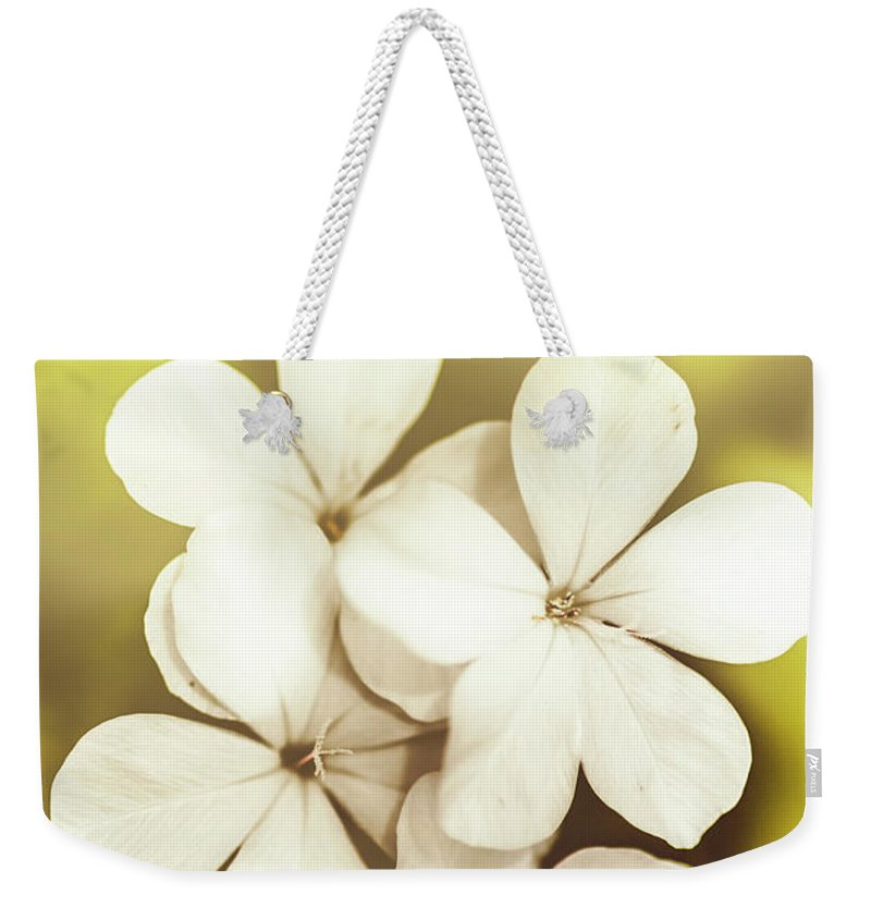 White Weekender Tote Bag featuring the photograph Pale Wildflowers by Jorgo Photography - Wall Art Gallery